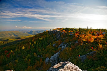 Fall at Dolly Sods